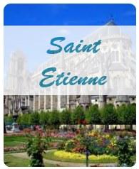 Malraux Saint Etienne