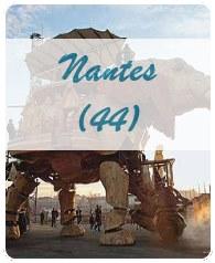 Malraux Nantes
